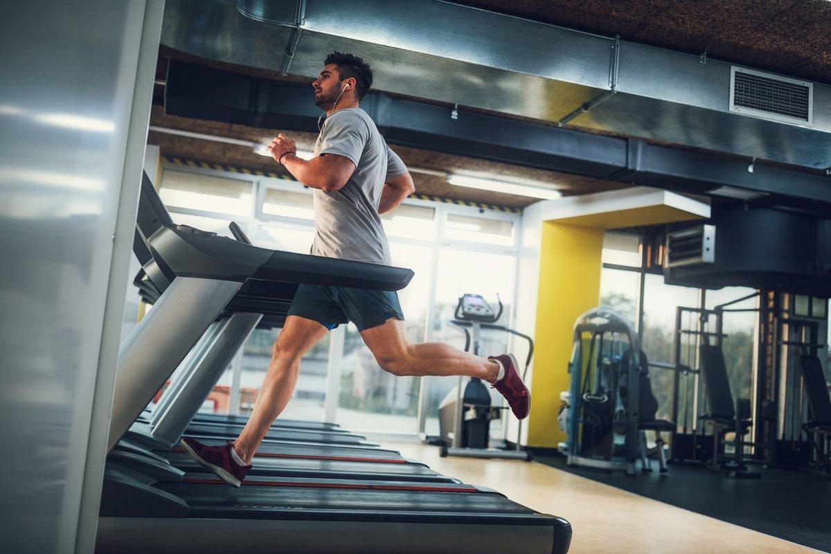 Exames indicados para praticantes de musculação