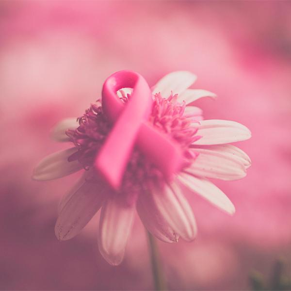 Outubro Rosa: movimento alerta para o combate ao câncer de mama